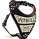 Bestia ''Metal'' genuine leather PERSONALIZED dog harness, Large breeds ONLY, cane corso, Rottweiler, Boxer, Presa, Bullmastiff, Dogo, Top Quality, 100% leather, soft padded.