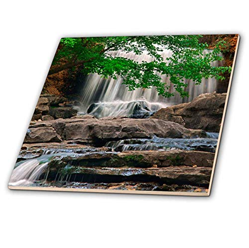 (3dRose Danita Delimont - Waterfalls - Tanyard Creek Falls cascading over rocks, Washington County, Arkansas - 8 Inch Glass Tile (ct_314574_7))