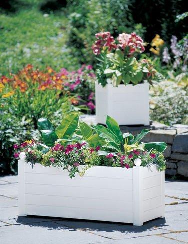 Terrazza Trough Planter, White - Buy Online in Oman