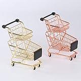 Coxeer Mini Shopping Cart Double Deck Pretend
