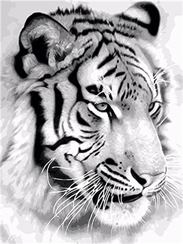 Shukqueen DIY Paint by Numbers for Adults, DIY Oil Painting Kit for Kids Beginner - Tiger Head 16X20 Inch (Framed Canvas)