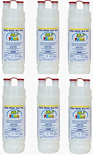 (King Technology Pool Frog Mineral Purifier Replacement Chlorine Bac Pac - 6 Pack Bundled with Floating Buoy Üben Pool Thermometer)