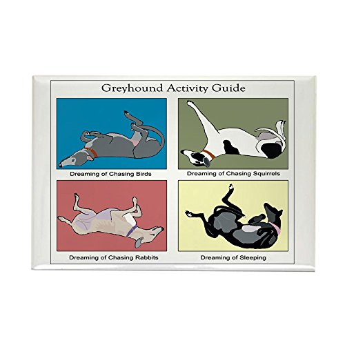 cafepress-greyhound-activity-guide-rectangle-magnet-2x3-refrigerator-magnet