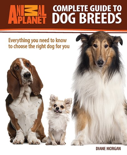 Buy Special Books : Complete Guide to Dog Breeds ...