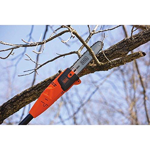BLACK+DECKER PP610 6.5-Amp Corded Pole Saw, 10-Inch by BLACK+DECKER (Image #2)