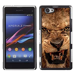 Paccase / SLIM PC / Aliminium Casa Carcasa Funda Case Cover para - Roar Lion Angry Close Eyes Teeth Portrait - Sony Xperia Z1 Compact D5503