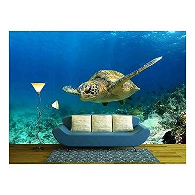 Delightful Print, Classic Artwork, Green Sea Turtle Swimming Underwater