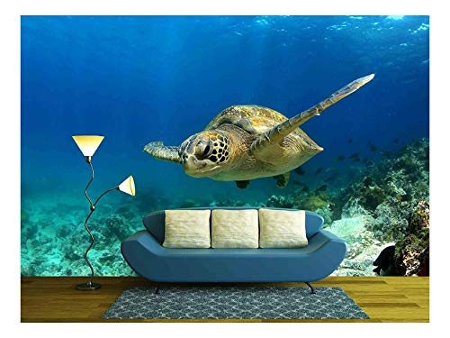 wall26 - Green Sea Turtle Swimming Underwater - Removable Wall Mural | Self-Adhesive Large Wallpaper - 66x96 inches