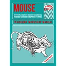 Mouse - A Taxidermy Workshop Manual