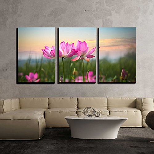 vas Wall Art - Beautiful Lotus Flower in Blooming at Sunset - Modern Home Decor Stretched and Framed Ready to Hang - 16