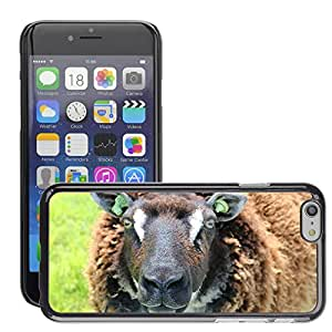 """Hot Style Cell Phone PC Hard Case Cover // M00114009 Animal Sheep Wool Nature Portrait // Apple iPhone 6 4.7"""""""