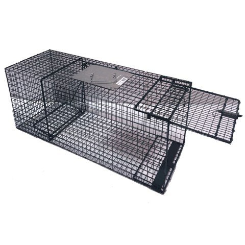 Kness Live Animal Cage Trap, 36 inLx13inWx13inH