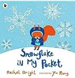 Snowflake in My Pocket
