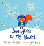 img - for Snowflake in My Pocket book / textbook / text book