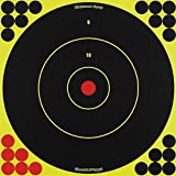 SHOOT-N-C 12 Inch Bullseye Targets -  500 Count Pack With 12,000 Pasters