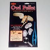 owl birthday chart for classroom - Educational Science Owl Pellet Kit, 3 Pellet, Sterile OP101-3