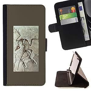 LG Magna / G4C / H525N H522Y H520N H502F H500F (G4 MINI,NOT FOR LG G4)Case , Biología Paleontología Fósil- la tarjeta de Crédito Slots PU Funda de cuero Monedero caso cubierta de piel