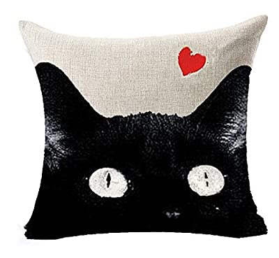 """Lyn Cotton Linen Square Throw Pillow Case Decorative Cushion Cover Pillowcase for Sofa 18 """"X 18 """" Black and white cat"""