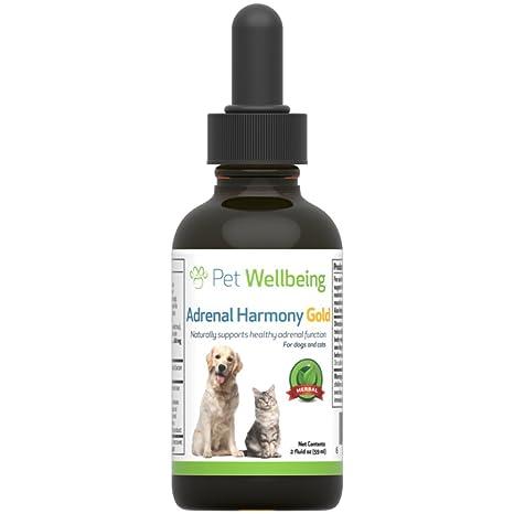 Pet Wellbeing - Adrenal Armonía Oro para Apoyo Natural Perros- para La Disfunción Adrenal Y