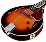 Ibanez M510EBS A-Style Mandolin, Brown Sunburst