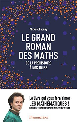 Le grand roman des maths. De la préhistoire à nos jours (DOCS, TEMOIGNAG) (French Edition)
