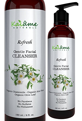Kaiame Naturals Gentle Facial Cleanser for Women and Men, 6 oz, All Natural and Organic, For All Skin Types, Anti-Aging, Exfoliates and Moisturizes