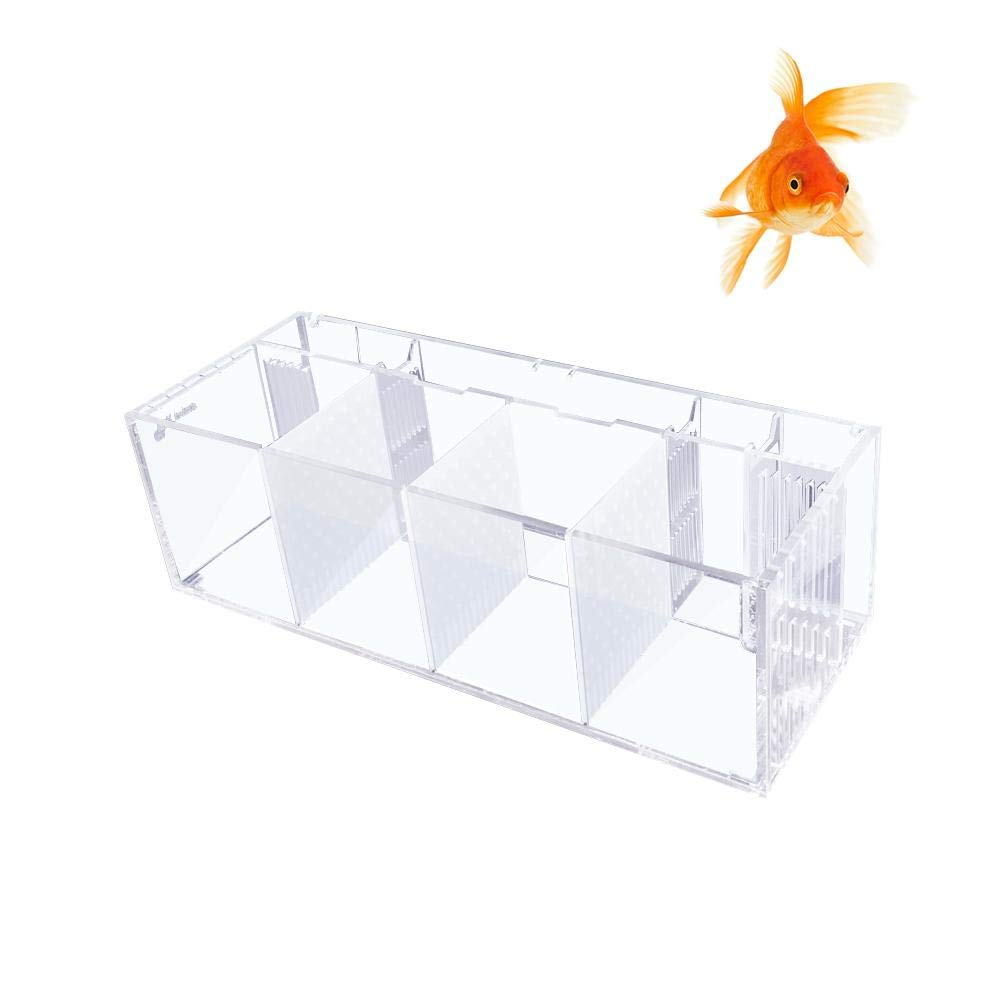 (cylinder + isolation plate) Nicemeet Acrylic Isolation Small Fish Tank, Free Water Pump Filter Bucket Fish Tank Four Grid