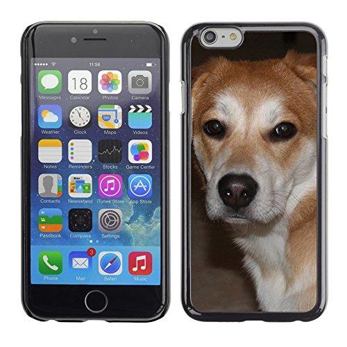 """Premio Sottile Slim Cassa Custodia Case Cover Shell // F00005809 chien // Apple iPhone 6 6S 6G 4.7"""""""