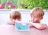 BBcute Trading Limited Company Ant Nursery Farm Maze with Feeding System