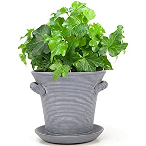 "Window Garden Rustic Charm 6"" Planter - Fine Home Décor Ceramic Indoor Decorative Pot. for Herbs, Flowers, Succulents or Starting Seeds. Beautifully Packaged, Great Gift for Mom. 6"