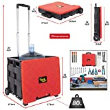dbest products Quik Cart Wheeled Rolling Crate