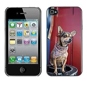 YOYO Slim PC / Aluminium Case Cover Armor Shell Portection //Cool Bandana Chiuauah Hipster //Apple Iphone 4