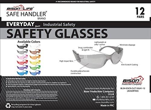 SAFE HANDLER Safety Glasses, Full Color with Polycarbonate Lens, Variety Pack (Box of 12) by Safe Handler (Image #3)