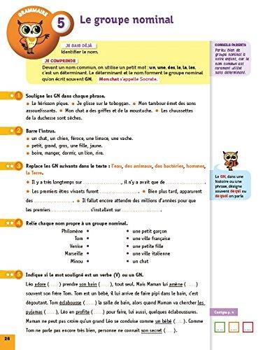 Français CE1. 7-8 ans. Cycle 2. Per la Scuola elementare Chouette Entraînement: Amazon.es: Dominique Marchand: Libros en idiomas extranjeros