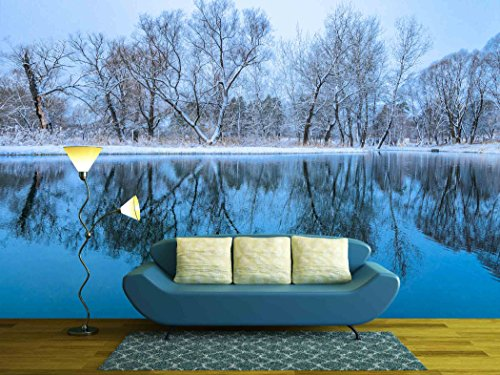 Landscape is Not Still Pond with Snowy Shore
