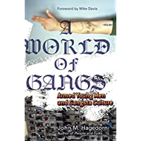 A World of Gangs: Armed Young Men and Gangsta Culture: 14