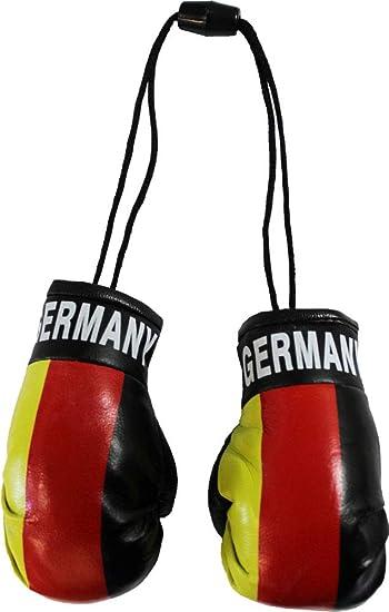 Italy Reppa Mini Boxing Gloves