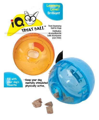 Our Pets Smarter Interactive IQ Treat Ball Dog Toy, 3 Inches