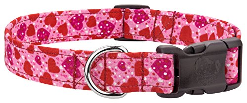 Country Brook Design Deluxe Speckled Hearts Designer Dog Collar - Medium