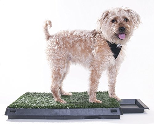 Downtown Pet Supply Dog Pee Potty Pad, Bathroom Tinkle Artificial Grass Turf, Portable Potty Trainer (20 x 25 inches with Drawer) by Downtown Pet Supply (Image #7)'