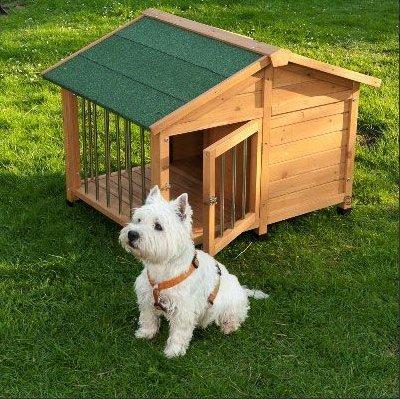 Atractivo Amplia - Caseta de perro ofrece espacio para casa su perro Cómoda y Segura Exteriores - con cerradura, rroofed Patio: Amazon.es: Productos para ...