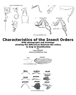 Characteristics of the Insect Orders by [Smith, Laura]
