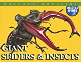 Giant Spiders and Insects, Chris McNab and Jonathan Sutherland, 0836868501
