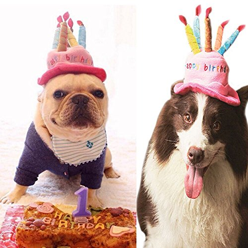 Easyinsmile Cute Adorable Dog Cat Birthday Cake Hat Pet cap Pet hat with 5 color Candles Design Party Custom Accessory (One size fits (Cat Birthday Cakes)