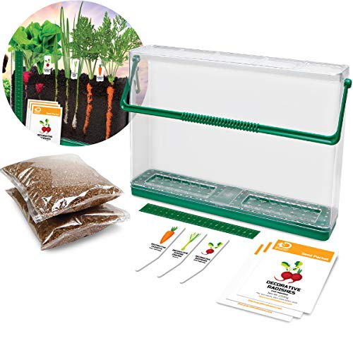Discovery Kids Mindblown DIY Veggie Grow Kit