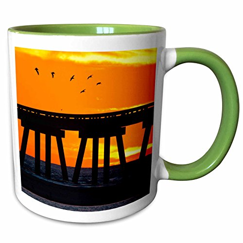 3dRose Danita Delimont - Larry Ditto - Birds - Brown Pelicans gliding over bridge at San Luis Pass, Galveston Island. - 11oz Two-Tone Green Mug - Outlets Galveston