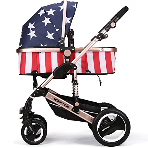 Best Double Stroller For Newborn And 2 Year Old - 2