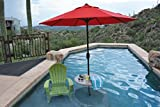 Inter-Fab PL-30 UMB TABLE-54 30-Inch Removable Table Kit for Swimming Pool Tanning Ledges, Mont Blanc