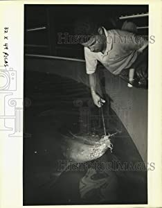 Historic Images - 1989 Press Photo Jose Vega Feeds Nurse Shark at Aquarium of The Americas