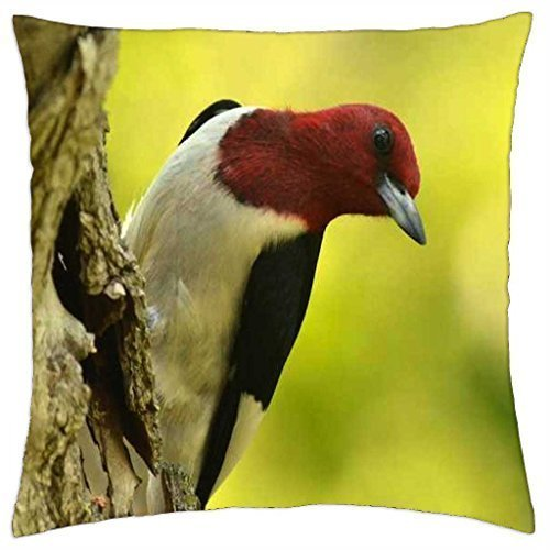 ArtsLifes Red Headed Woodpecker on Tree - Throw Pillow Cover Case